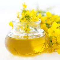 tipy Druhy olejů a jejich účinky na pleť