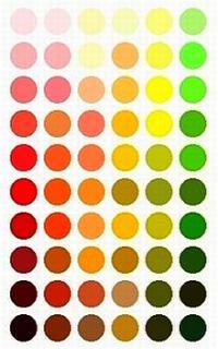 tipy Jste jarní barevný typ?